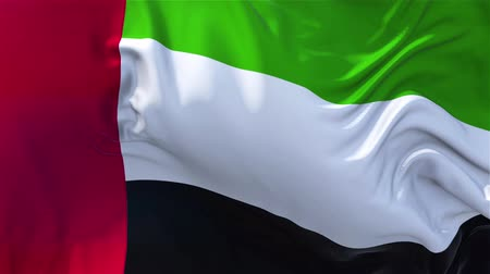 nejlon : United Arab Emirates Flag in Slow Motion blowing in wind seamless loop.