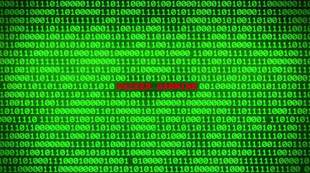 id : Wall of Green Binary Code Revealing HACKER WARNING Word Between Random Binary Data Matrix Background