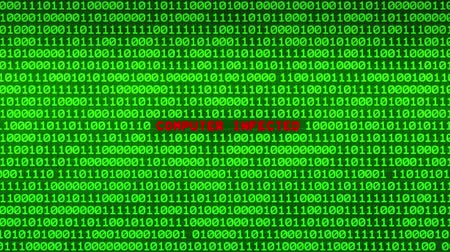 spying : Wall of Green Binary Code Revealing COMPUTER INFECTED Word Between Random Binary Data Matrix Background