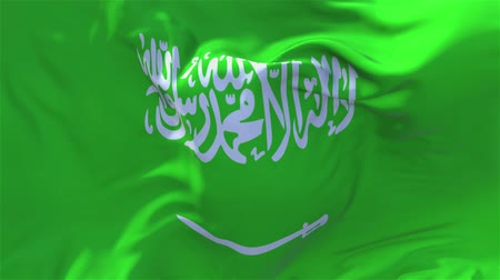 národnost : Saudi Arabia Flag Waving in Wind Slow Motion Animation . 4K Realistic Fabric Texture Flag Smooth Blowing on a windy day Continuous Seamless Loop Background.