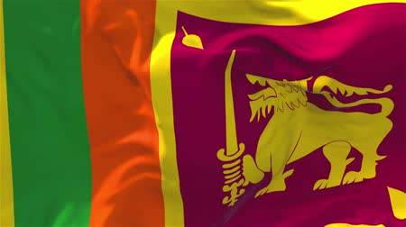 národnost : Sri Lanka Flag Waving in Wind Slow Motion Animation . 4K Realistic Fabric Texture Flag Smooth Blowing on a windy day Continuous Seamless Loop Background.