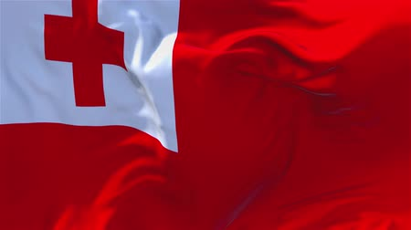 národnost : Tonga Flag Waving in Wind Slow Motion Animation . 4K Realistic Fabric Texture Flag Smooth Blowing on a windy day Continuous Seamless Loop Background.