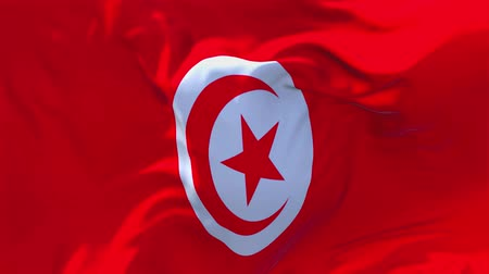tunisia : 59. Tunisia Flag Waving in Wind Slow Motion Animation . 4K Realistic Fabric Texture Flag Smooth Blowing on a windy day Continuous Seamless Loop Background. Stock Footage