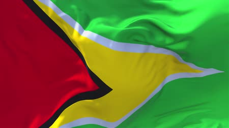 volby : Guyana Flag Waving in Wind Slow Motion Animation . 4K Realistic Fabric Texture Flag Smooth Blowing on a windy day Continuous Seamless Loop Background.