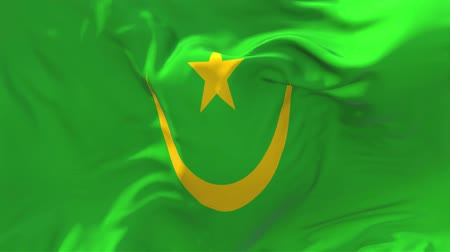 мавританский : Mauritania Flag Waving in Wind Slow Motion Animation . 4K Realistic Fabric Texture Flag Smooth Blowing on a windy day Continuous Seamless Loop Background. Стоковые видеозаписи