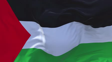 filistin : Palestine Flag Waving in Wind Slow Motion Animation . 4K Realistic Fabric Texture Flag Smooth Blowing on a windy day Continuous Seamless Loop Background.
