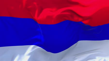 banja : Republic of Srpska Flag Waving in Wind Slow Motion Animation . 4K Realistic Fabric Texture Flag Smooth Blowing on a windy day Continuous Seamless Loop Background.