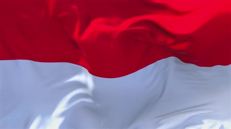 národnost : Indonesia Flag Waving in Wind Slow Motion Animation . 4K Realistic Fabric Texture Flag Smooth Blowing on a windy day Continuous Seamless Loop Background. Dostupné videozáznamy
