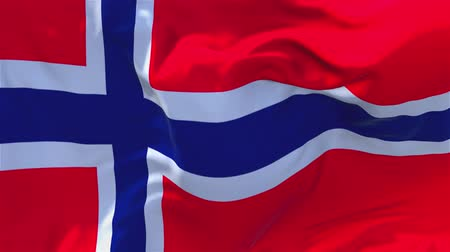 siyasi : Norway Flag Waving in Wind Slow Motion Animation . 4K Realistic Fabric Texture Flag Smooth Blowing on a windy day Continuous Seamless Loop Background.