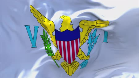 president of united states : Virgin Islands US Flag Waving in Wind Slow Motion Animation . 4K Realistic Fabric Texture Flag Smooth Blowing on a windy day Continuous Seamless Loop Background. Stock Footage