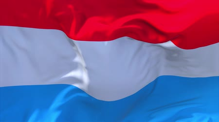 президент : Luxembourg Flag Waving in Wind Slow Motion Animation . 4K Realistic Fabric Texture Flag Smooth Blowing on a windy day Continuous Seamless Loop Background.