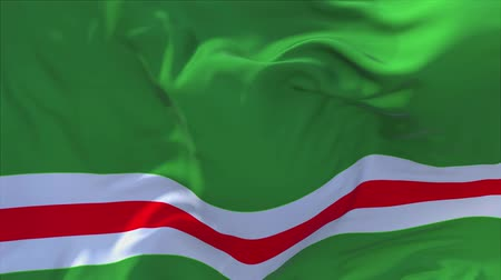 národnost : Chechen Republic of Ichkeria Flag Waving in Wind Slow Motion Animation . 4K Realistic Fabric Texture Flag Smooth Blowing on a windy day Continuous Seamless Loop Background.