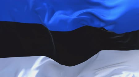 národnost : 174. Estonia Flag Waving in Wind Slow Motion Animation . 4K Realistic Fabric Texture Flag Smooth Blowing on a windy day Continuous Seamless Loop Background.