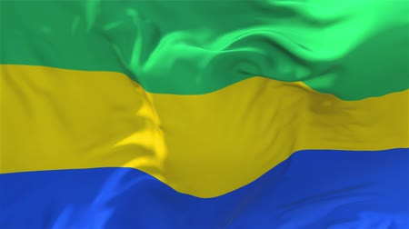 národnost : 177. Gabon Flag Waving in Wind Slow Motion Animation . 4K Realistic Fabric Texture Flag Smooth Blowing on a windy day Continuous Seamless Loop Background. Dostupné videozáznamy