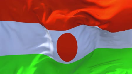 niger : Niger Flag Waving in Wind Slow Motion Animation . 4K Realistic Fabric Texture Flag Smooth Blowing on a windy day Continuous Seamless Loop Background.