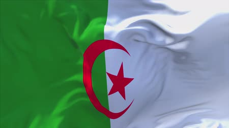 seamless looping : Algeria Flag Waving in Wind Slow Motion Animation . 4K Realistic Fabric Texture Flag Smooth Blowing on a windy day Continuous Seamless Loop Background.