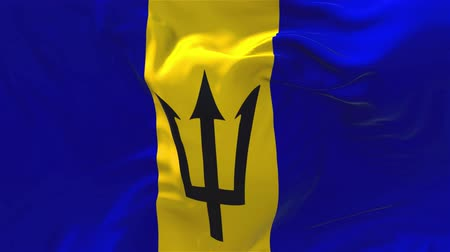 barbados : Barbados Flag Waving in Wind Slow Motion Animation . 4K Realistic Fabric Texture Flag Smooth Blowing on a windy day Continuous Seamless Loop Background. Stock Footage