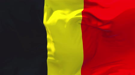 belga : Belgium Flag Waving in Wind Slow Motion Animation . 4K Realistic Fabric Texture Flag Smooth Blowing on a windy day Continuous Seamless Loop Background.