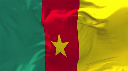 národnost : Cameroon Flag Waving in Wind Slow Motion Animation . 4K Realistic Fabric Texture Flag Smooth Blowing on a windy day Continuous Seamless Loop Background. Dostupné videozáznamy