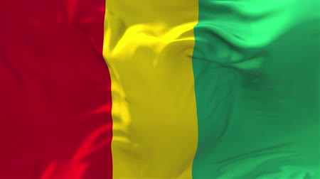 gine : Guinea Flag Waving in Wind Slow Motion Animation . 4K Realistic Fabric Texture Flag Smooth Blowing on a windy day Continuous Seamless Loop Background.