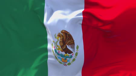 národnost : Mexico Flag Waving in Wind Slow Motion Animation . 4K Realistic Fabric Texture Flag Smooth Blowing on a windy day Continuous Seamless Loop Background. Dostupné videozáznamy