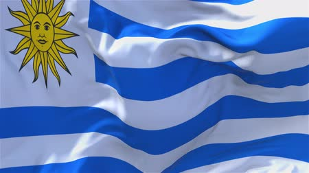 národnost : Uruguay Flag Waving in Wind Slow Motion Animation . 4K Realistic Fabric Texture Flag Smooth Blowing on a windy day Continuous Seamless Loop Background.