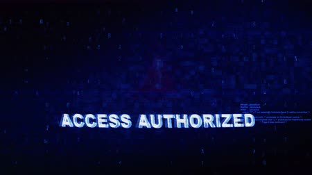 czytanie : Access Authorized Text Digital Noise Glitch Effect Tv Screen Loop Background. Login and Password With System Error Security ,Hacking Alert , Cyber Crime Attack Computer Error Distortion Message .