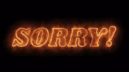 apologize : SORRY Word Hot Animated Burning Realistic Fire Flame and Smoke Seamlessly loop Animation on Isolated Black Background. Fire Word, Fire Text, Flame word, Flame Text, Burning Word, Burning Text. Stock Footage