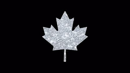 canadense : Canadian Maple Leaf Icon Sparkling Shining White Blinking Particles Diamond Glitter Loop Light 4K Animation Alpha Channel.