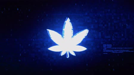 ikon : Marijuana Leaf Symbol Abstract Digital Pixel Noise Glitch Error Video Damage Signal Loop 4K Animation.