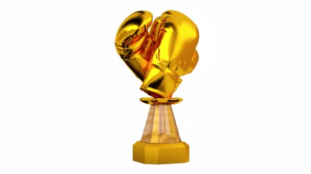 infinito : Front View of Gold Trophy Boxing in Infinite Rotation Stock Footage