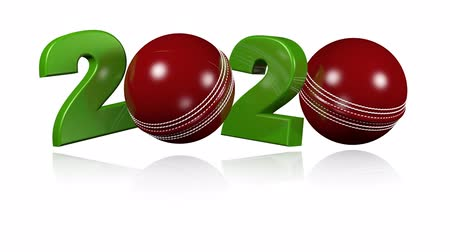 подача : Cricket ball 2020 design in Infinite Rotation