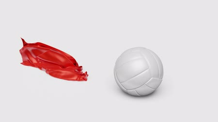 Red Shiny fabric piece which is hidden one Volleyball and discovering it