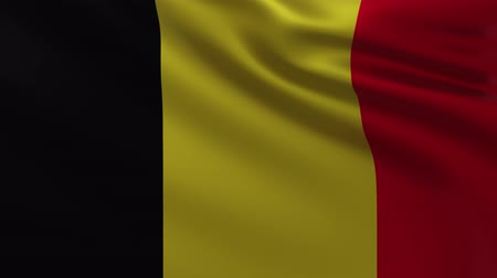 marş : Large Belgian flag background in the wind