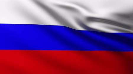 Large Russian flag background in the wind Wideo