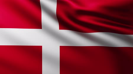 marş : Large Flag of Denmark background fluttering in the wind