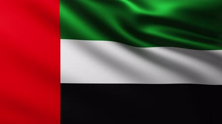 marş : Flag of United Arab Emirates background fluttering in the wind
