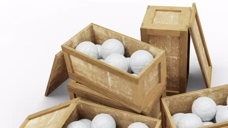 jumble : Volleyball Balls Volleyball Balls Stock Footage