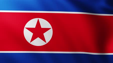 creased : Large Flag of North Korea background fluttering in the wind