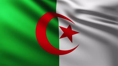 algeria : Large Algerian flag background fluttering in the wind