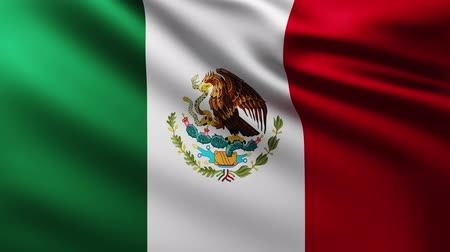 gavilan : Large Flag of Mexico background fluttering in the wind