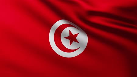 creased : Large Flag of Tunisia background fluttering in the wind