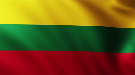 flag of lithuania : Large Lithuanian Flag background fluttering in the wind Stock Footage