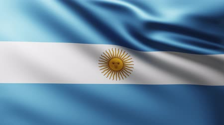 crumpled : Large Flag of Argentina background fluttering in the wind with wave patterns Stock Footage