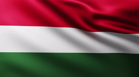 marş : Large Hungarian Flag background fluttering in the wind with wave patterns Stok Video