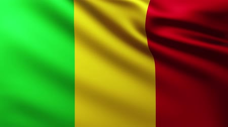 creased : Large Malian Flag background fluttering in the wind with wave patterns Stock Footage