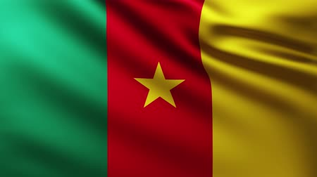 creased : Large Flag of Cameroon background fluttering in the wind