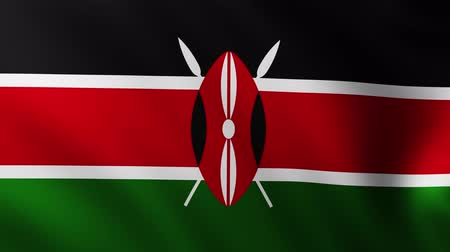 creased : Large Kenyan Flag background fluttering in the wind Stock Footage