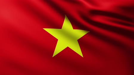 beginnings : Large Flag of Vietnam background fluttering in the wind