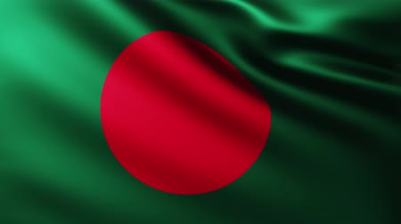 homeland : Large Flag of Bangladesh fullscreen background fluttering in the wind Stock Footage